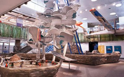 The Discovery Museum – Reno, NV