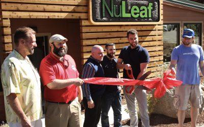 Los Mejores Dispensarios en Lago Tahoe – Elévate en la Montaña