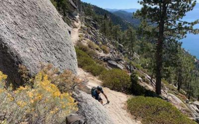 Mountain Biking Lake Tahoe: Offering the best mountain biking in California's Sierra Nevada