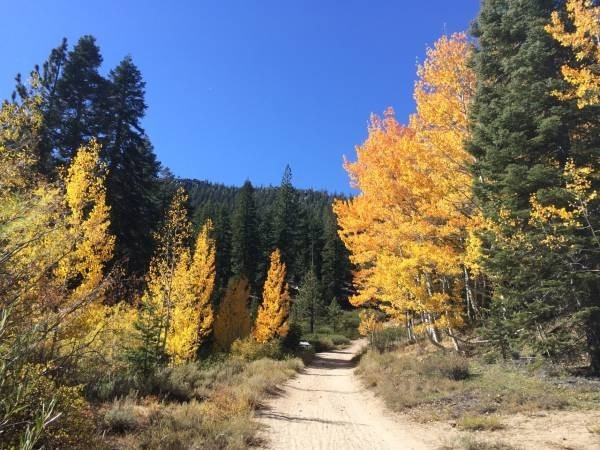 Best Lake Tahoe Autumn Hikes for Leaf Peepers