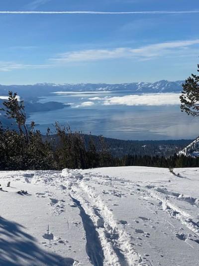 View Tahoe Tamarack Peak vert
