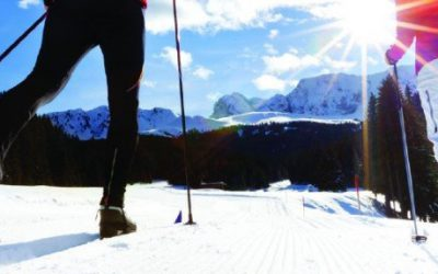 Lake Tahoe Cross Country Ski Guide