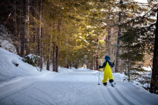Niño esquiando a campo traviesa