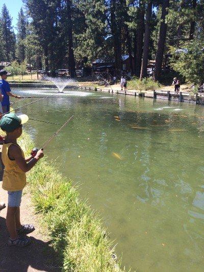 granja-tahoe-trout