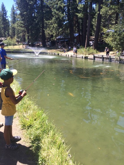 Tahoe Trout Farm - things to do with kids