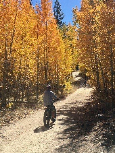 sendero-bicicleta-otoño