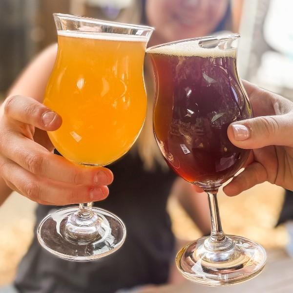 Tahoe Breweries Cheers